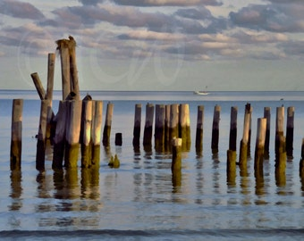 Pilings in the bay off Cape Charles in Virginia (Landscape style)