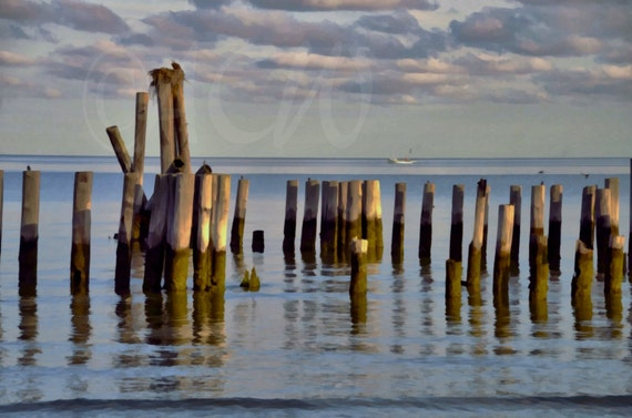 Pilings in the bay off Cape Charles Virginia (Landscape style)