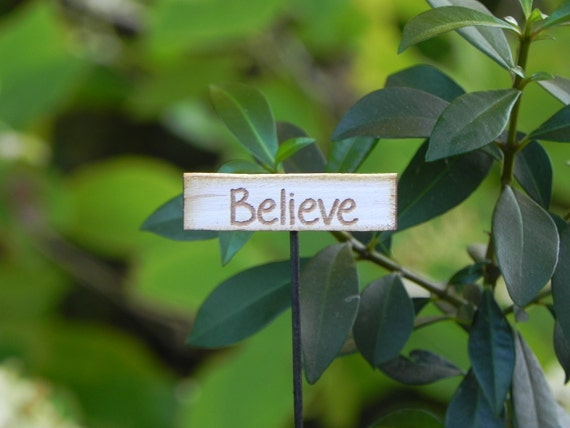 Fairy Garden miniature sign - Believe