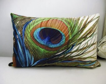 PROMOTION Velvet Pillow Cover Peacock feather pillowcase Decorative throw pillow cushion cover double sides design optional sizes wholesale