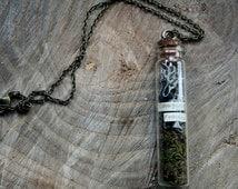 Campylopus Fragilis, Glass jar necklace