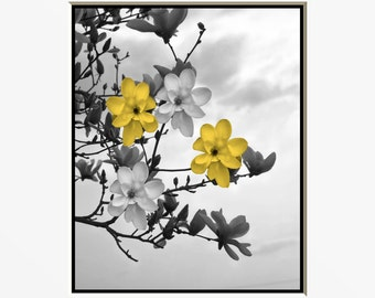 Yellow Gray Flowers On Tree Branch/Floral Decorative Bedroom Walll Art Photography Matted Picture