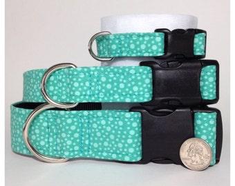 Teal dots dog collar
