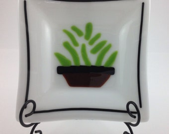 Green Plant On A White Fused Glass Dish
