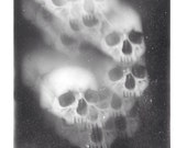Sedlec Ossuary I print