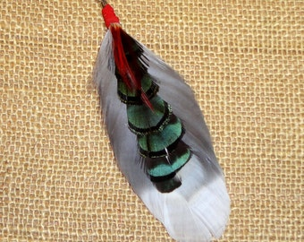 Cruelty FREE Feather Earring #374  Seagull and Pheasant Feathers