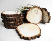 "5""-6"" Wood Slices, Tree Slices, Wood Circles, Tree Trunk Slices, Wedding Decor, Woodworking Supplie, Set of 7 (B04)"