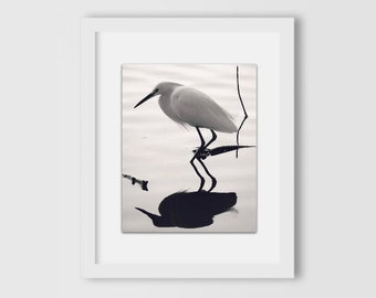 Snowy Egret and Reflection Print | Nature Photography | Home Decor | Home & Office | Gift Under 30