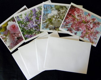BLOSSOMING SPRING TREES, assorted 4-piece note card set, has been created and produced by Pam Ponsart of Pam's Fab Photos