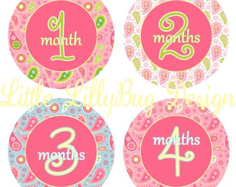 ON SALE Monthly Baby Milestone Stickers Baby Girl Baby Shower Gift One-Piece Baby Stickers Monthly Baby Stickers Baby Month Sticker 7