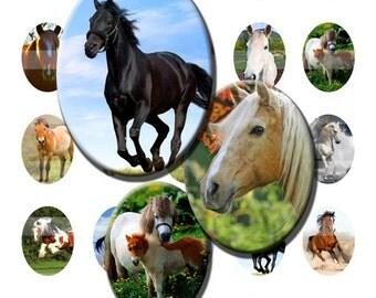 Horse Pony Equine Ride Gallop Mane Digital Images Collage Sheet 30x40mm Ovals INSTANT Download O22