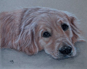 Custom Dog Drawing, From Picture, custom pet drawing, Custom dog Pastel, charcoal drawing, pet sketch, personalized, Golden Retriever, 8x10""