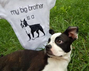 SHIPS ASAP, Boston Terrier Baby Clothes, Big Brother Dog Shirt, Boston Terrier Gifts, Dog Big Brother Shirt, Dog Baby Clothes, Dog TShirt
