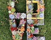 Monogrammed Letter Succulent Planter!