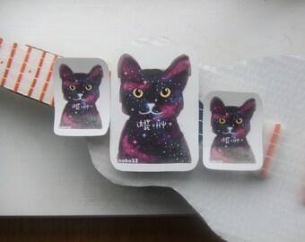 Cool Cosmic Cat Vinyl Stickers - Schrodinger's Cat