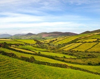 Hillside Pastures in Dingle Ireland Photo Print Mounted on Foam Board Ready for Wall