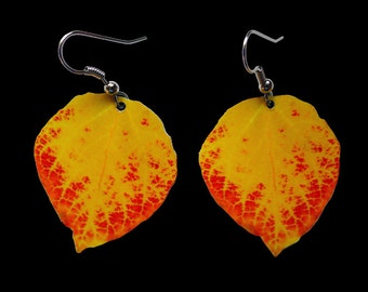 Red & Yellow Aspen Leaf Earrings #5