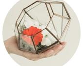 Geometric glass Solder Terrarium housing for plants moss or succulent waterproof 'Diamond' shape