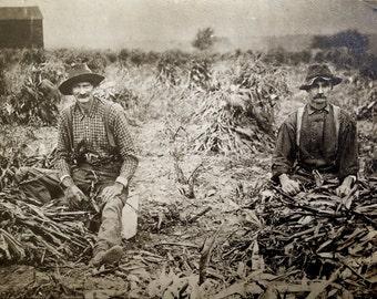 Antique Occupational Farming Photo // Original corn field photograph of farmers in suspenders // 10's 20's or 30's depression era farm photo