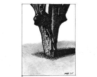Hawthorne Tree (print)