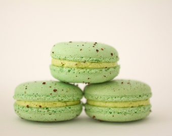 Pistachio French Macarons -- Gift Box of 10 -- Bisou Bisou