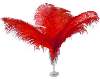 "10 Pcs 8-10"" 10-12"" 12-14"" 14-16"" Red Ostrich Feather Plume 14-16"""