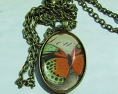 Victorian Oval Pendant with Antique Butterfly Image Under Polished Glass