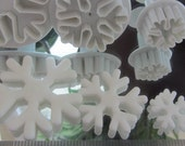 Snow Flake Plunger Cutters great for cookies fondant or gumpaste Frozen Cakes and Cookies