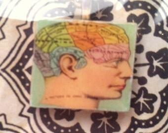 Scrabble Tile Necklace: Phrenology