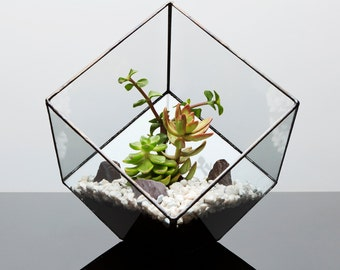 UK made Fully assembled Aztec Cube Terrarium with Succulents