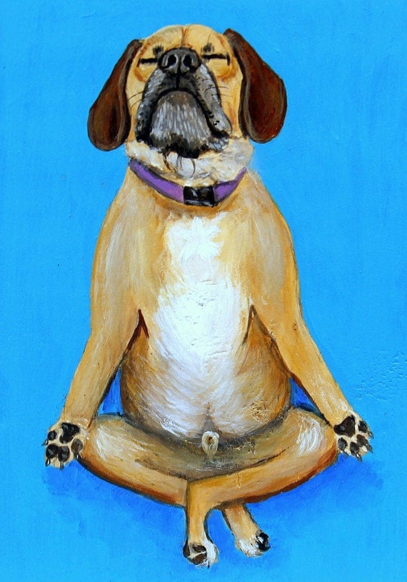 Meditating Maxi Puggle Dog Art Yoga Fine Art Prints  by Carol Iyer