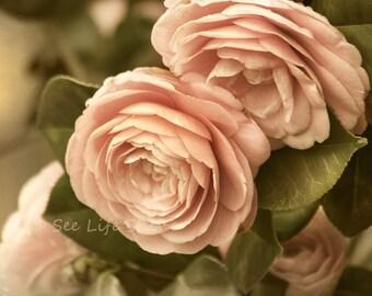 Camellias Flower, Photography Print, romantic, Bedroom Wall Art, Cottage Art, Dusty Pink, Bedroom Decor, Flower Art, cottage decor