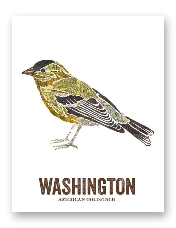 Washington State Bird Nature Art Outdoor Art By Woodenpencilco