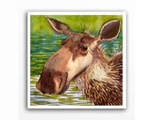Moose Animal Art Print - Watercolor Painting - Fine art woodland forest animals country wildlife nature brown nursery art   12x12 A