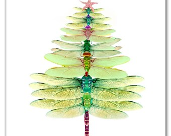 Dragonfly Tree cards. Winter solstice card,Christmas tree, 10 per box holiday card set,woodland gift. green,dragonfy, original artwork