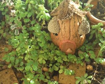 walnut house for fairy garden or terrarium