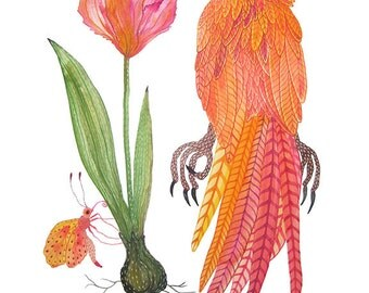 Parrots Print, giclee art print, botanicals, tulip flowers, bird art, tropical birds, gouache, watercolour print
