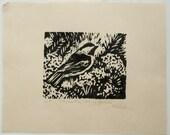 Chickadee among Yarrow Linocut print