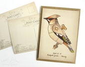 Waxwing Postcard - Clockwork Bird steampunk illustration print