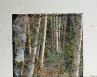 Norwegian WOOD Encaustic Photo Painting Trees Forest Tree Trunks Forest Fog Photography