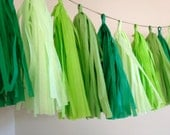 GREEN OMBRE / tissue paper tassel garland / photo backdrop / nursery decoration / wedding decorations / birthday decor / party decorations