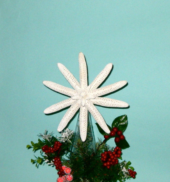 Beach Christmas Tree Topper: Starfish Tree Topper Available Natural With Crystals Or