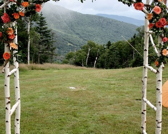 Wedding Arch/ Arbor/ Chuppa