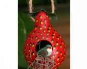 Strawberry Red Gourd Birdhouse, Gourd Ornament, Strawberry Delight
