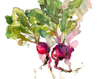 Kitchen Art, Spring Gardening radish watercolor- 8x10 print from an original watercolor sketch