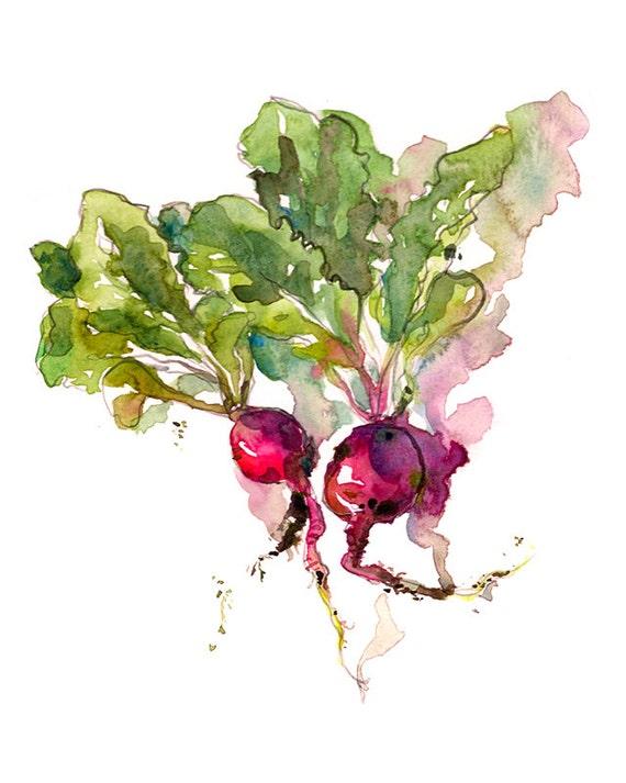 Kitchen Art Spring Gardening radish watercolor 8x10 print