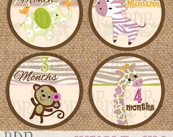 "Jungle Jill Onesize Month Stickers - 4"" diameter - INSTANT DOWNLOAD"