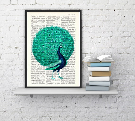 Peacock with seafoam tail Print on Vintage Dictionary Book illustration book print peacock art ANI155