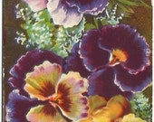 "Antique Postcard Pansies Pansy Flowers ""Best Wishes""  Ephemera"