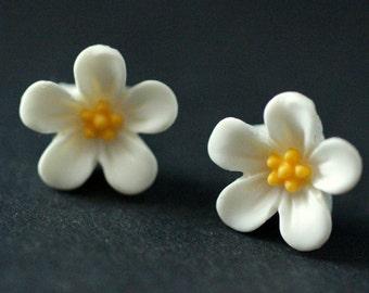 White Flower Earrings. White Forget Me Not Flower Earrings with Bronze Stud Earrings. White Earrings. Flower Jewelry. Handmade Jewelry.